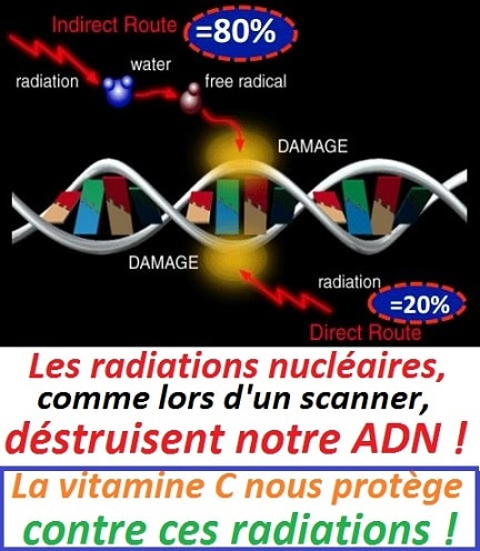 fukushima-explosion-DNA-damage-vitamine-C-protection