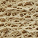 L'attribut alt de cette image est vide, son nom de fichier est os-collagene-petit.png.